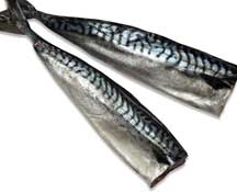 Head Off Salted Mackerel